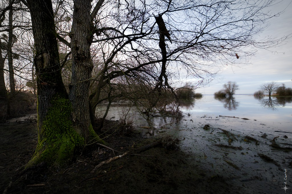 2019 01 18 MG 1260 Flooded lake in winter 0 1024px